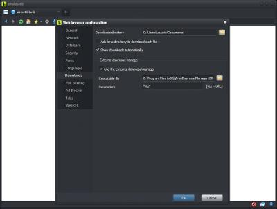 BriskBard external download manager