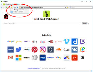 How do I use web bookmarks in BriskBard?